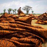 Sumbang Ekspor Rp 734 M : Menperin Pamer Industri Batik